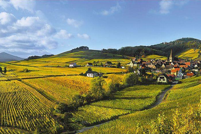 BMW Des Moines >> La Route des Vins d'Alsace
